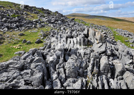 Carboniferous limestone outcrop on the mountain above Dan-yr-Ogof caves in the Black Mountains,South Wales,UK - Stock Image