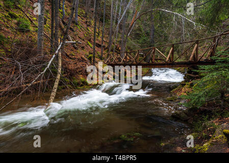 Wooden bridge in the forest. Canyon of waterfalls in Rhodopes mountain near Smolyan city, Bulgaria. - Stock Image