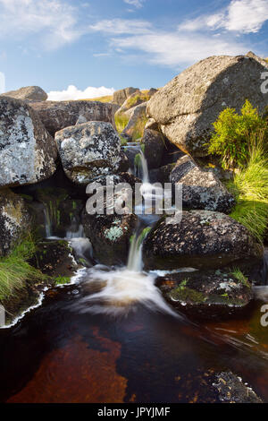 Small waterfall East Dart River Postbridge Falls Dartmoor National Park Devon Uk - Stock Image