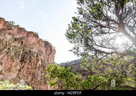 Low angle view of canyon cliffs at Main Loop trail in Bandelier National Monument in New Mexico with sun behind tree in Los Alamos - Stock Image