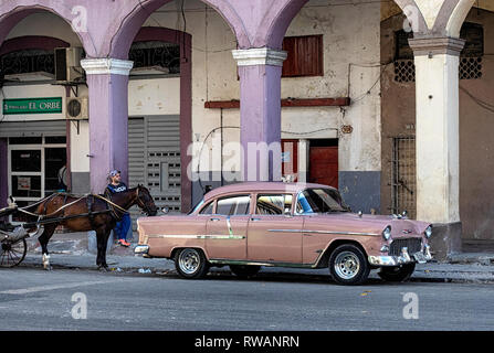 Old American car and horse in the centre of Havana, capital of Cuba - Stock Image