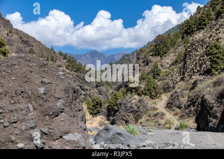 Looking east along the dried river bed, towards the vlcanic blast craster at Barranco de las Augustias, La Palma, Spain - Stock Image