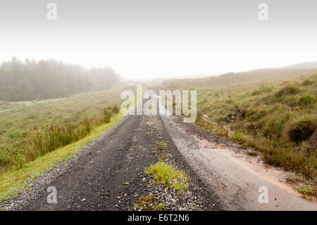 remote hillside track in the mist - Stock Image
