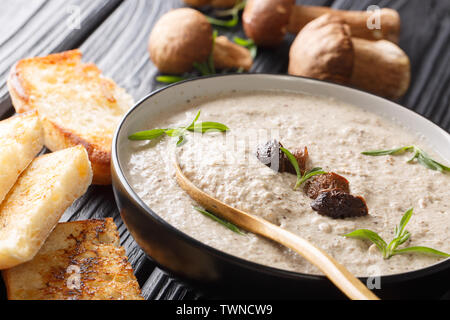 Thick soup puree of fresh wild mushrooms with thyme close up in a bowl served with toast on the table. horizontal - Stock Image