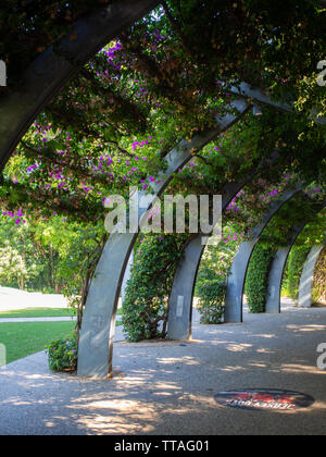 Walkway Through A Garden Overhead - Stock Image