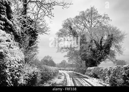 Winter lane in the Chilterns near High Wycombe, Buckinghamshire, England - Stock Image