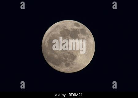 Hailsham, UK. 20th Jan 2019.UK weather. Tonights full moon, also known as a wolf moon, rises over the town of Hailsham in East Sussex, UK. Credit: Ed Brown/Alamy Live News - Stock Image