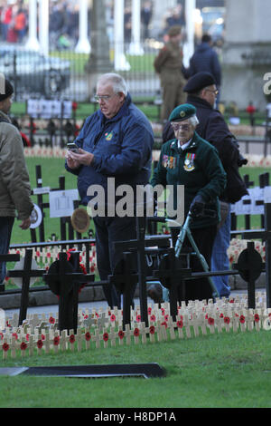 London, UK. 11th November, 2016. Thousands of crosses planted at the Fields of Remembrance at Westminster Abbey - Stock Image