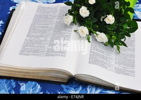 Open Bible and white roses - Stock Image