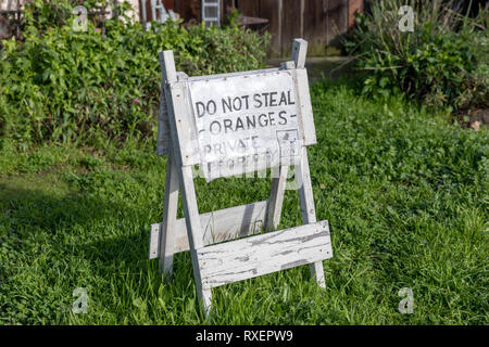 'Do not steal oranges – Private property – CCTV', sign in garden, Sunnyvale, California, USA - Stock Image