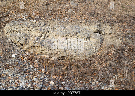 Tertiary gravel deposit on Nose Hill - Stock Image