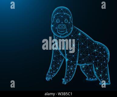 Gorilla low poly model, African animal polygonal wireframe vector illustration on dark blue background - Stock Image