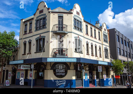 The chippo public house bar and hotel in Chippendale,Sydney,New South Wales,Australia - Stock Image