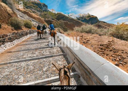 Tourists on donkeys climb the stairs, Fira, Santorini - Stock Image