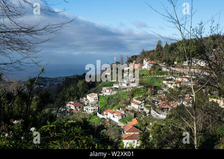 Portugal, Madeira Island, Funchal, Monte - Stock Image