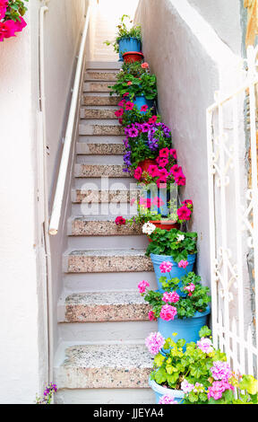 Beautiful Stairs With Flower - Stock Image