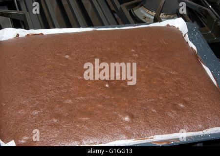 gourmet chocolate , brownie - Stock Image