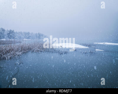 Trees by lake in winter - Stock Image