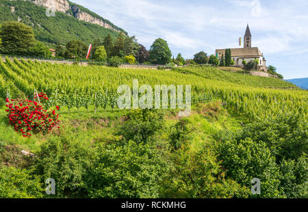 spring view of the Church of the idyllic village of Cortaccia ( Kurtatsch an der Weinstraße ). Cortaccia extends on the sunny side of the wine road.  - Stock Image