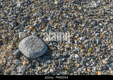 Larger rock (possibly formed from concrete) sitting alone on a shingle bed composed of smaller stones and pebbles. Metaphor: 'Last Man Standing'. - Stock Image