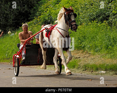 horse drawn trap travelling at speed on the hill Appleby-in Westmorland at the annual Appleby Horsefair, Cumbria, England, UK, 8 June, 2018. high speed horsetrap Credit: Steve Holroyd/Alamy Live News - Stock Image