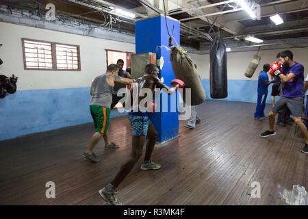 Cuba, Havana. Boxers training in gym. Credit as: Wendy Kaveney / Jaynes Gallery / DanitaDelimont.com - Stock Image
