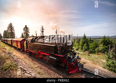 Steam locomotive driving through beautiful nature in the summer - Stock Image