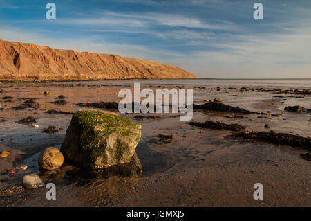A view of Filey Brigg from Filey Bay at low tide. Filey, North Yorkshire. November. - Stock Image