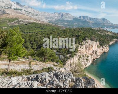 Pine tree forest and mountain Biokovo over small beach and calm blue sea in Croatia - Stock Image