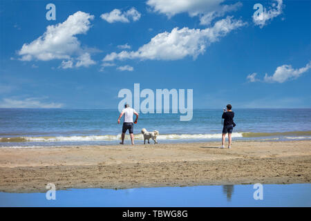 Couple playing with dog on the beach along the North Sea coast in summer - Stock Image