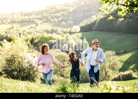 Senior couple with granddaughter walking outside in spring nature. Copy space. - Stock Image