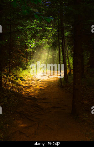 The end of the Tunnel - Stock Image