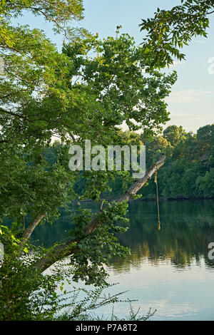 Rope swing over the Coosa River in summer in Wetumka Alabama, USA. - Stock Image