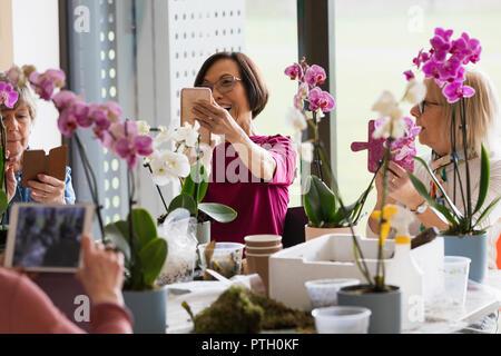 Active seniors with camera phones enjoying flower arranging class - Stock Image