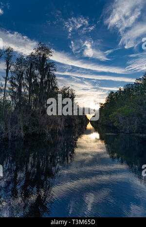 Canal at south entrance to Okefenokee swamp, with sunset in distance. - Stock Image