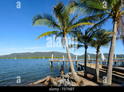 Scenic view of Marlin Wharf with palm trees along Trinity Inlet, Cairns, Far North Queensland, FNQ, QLD, Australia - Stock Image