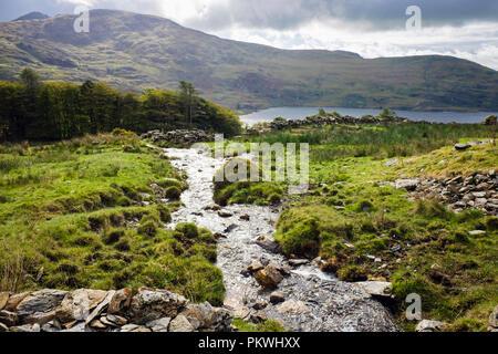Stream and Llyn Cwmystradllyn reservoir below Moel Ddu hillside in Snowdonia National Park. Porthmadog, Gwynedd, Wales, UK, Britain - Stock Image