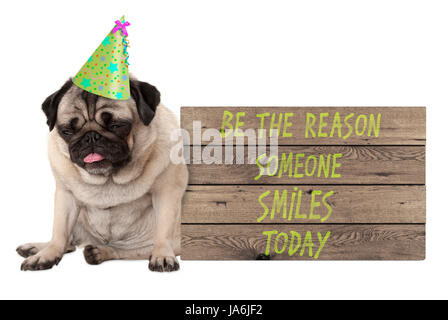 bad tempered pug puppy dog with wooden sign with text be the reason someone smiles today, isolated on white background - Stock Image