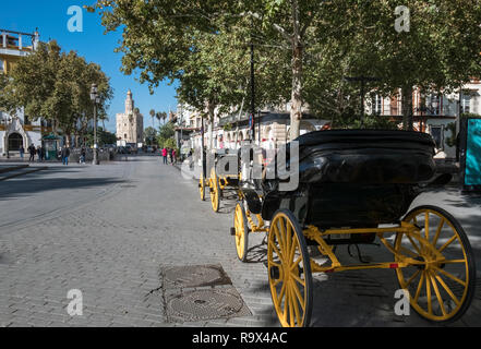Horse drawn carriages waiting for customers, with historic defensive tower Torre Del Oro in the distance, Seville, Spain. - Stock Image