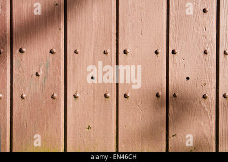 Painted wooden wall of a shed with bolts and dappled sunlight - Stock Image
