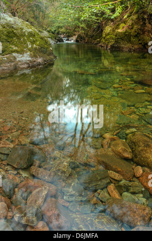 The calm waters of the River Erme below the second of two Grade 4 dog-leg rapids deep in the Upper section of the - Stock Image