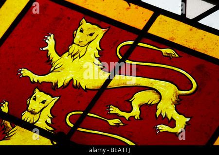 stained glass windows coat of arms couvent jacobins, salle dominicains saint emilion bordeaux france - Stock Image