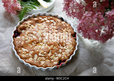 Blackcurrant cake with almond topping - Stock Image