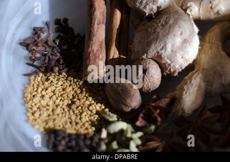 Close-up of Ayurvedic spices in a white bowl. - Stock Image
