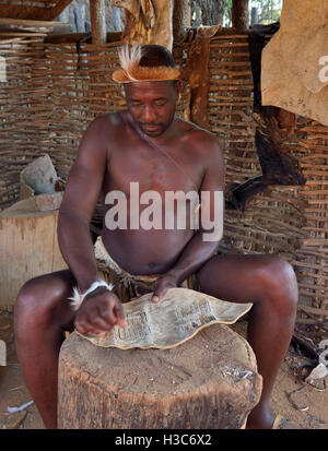 Zulu man troupe member in traditional clothes paring a hide for a shield with a sharp stone  , Shakaland Cultural - Stock Image