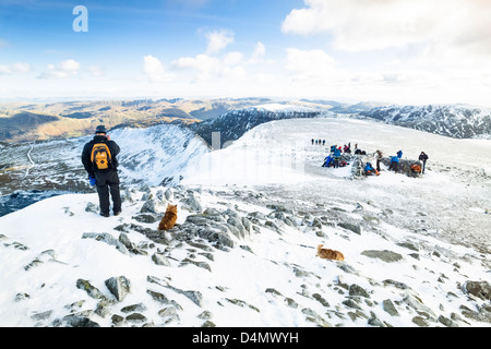 Climbers, hikers  and dogs on the summit of Helvellyn in winter, the Lake District. - Stock Image