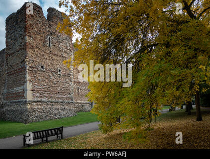 Colchester Castle, Essex - Stock Image
