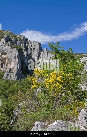 Natural Landscape With Rocks In The Mirna Valley In Istria - Stock Image