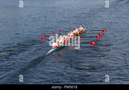 Copenhagen, Denmark, 13th October, 2018. A combined Swedish junior team in the eight race in the 6,5 km international regatta, the Copenhagen Harbour Race, from Langebro in the inner harbour to the lock gate system in the South Harbour and back. Crew and oars are in Kungälv Rowing Club colours. Credit: Niels Quist/Alamy Live news - Stock Image
