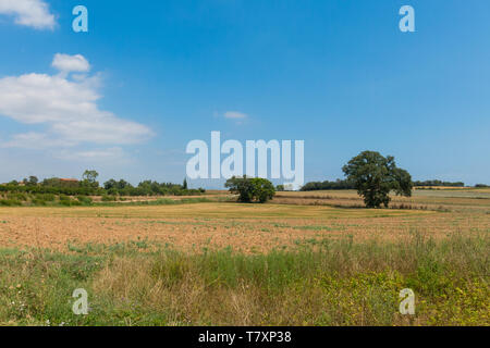 Typical landscape of the Emporda in Catalonia:. Polish countryside, harvested fields, haystacks. Costa Brava, Spain. - Stock Image
